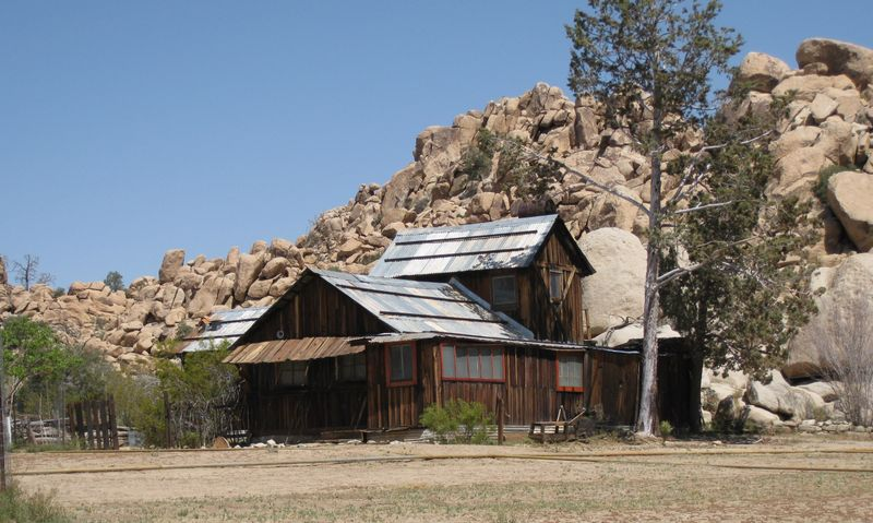 Joshua Tree Homestead